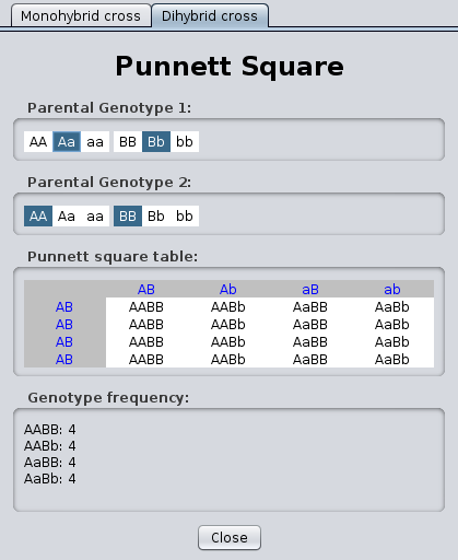 Pin Punnett Square Virtual Lab Worksheet Answers Was Used To Find on ...